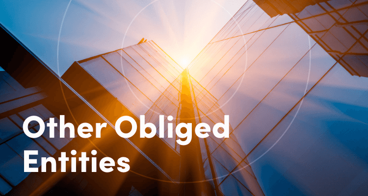 Obliged Entities AML requirements