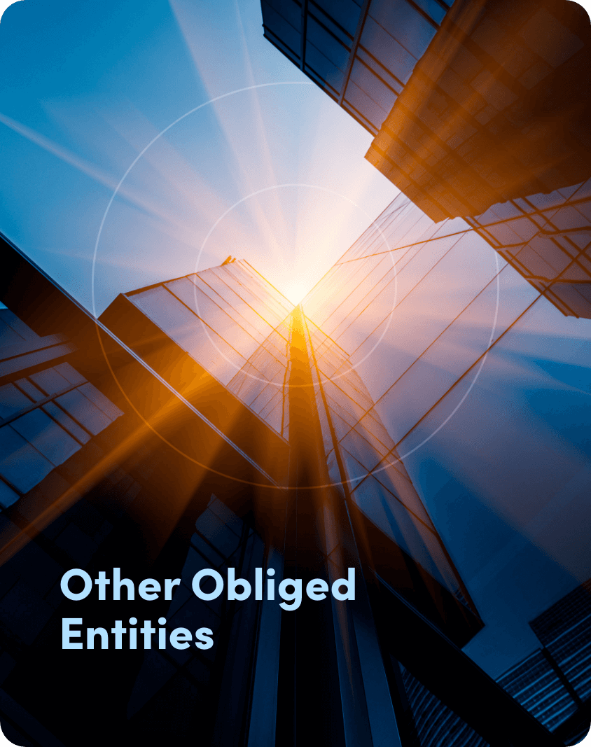 Obliged Entities Beneficial Owner